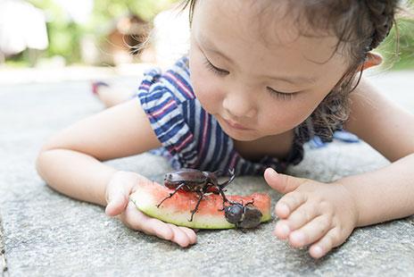 """夏休みは子どもの「夢中」を発掘しよう!―""""調べる""""習慣で社会に目を向けるきっかけ作りも― /Japan"""