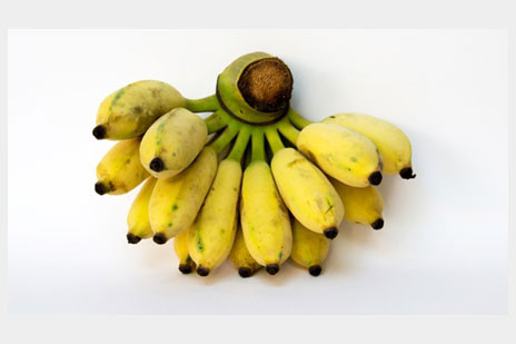 yukiバナナ1