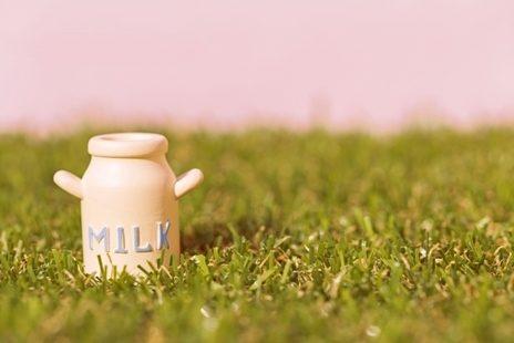 kocchi牛乳1-4